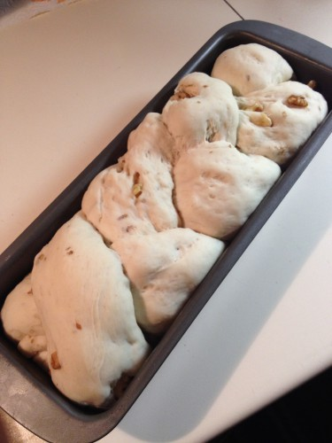 pane,pane al latte e noci ricetta di sara papa,ricetta pane alle noci,pane al latte con noci
